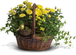 Yellow Trio Basket