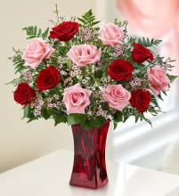 Shades of Pink and Red Roses