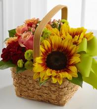 The Bright Day Ahead Basket