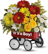 Baby\'s Wow Wagon - Boy