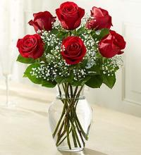 Love\'s Embrace™ Roses - Red
